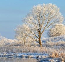 Latvian winter landscape